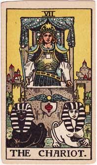daily-chariot-tarot-card